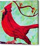 Festive Cardinal Canvas Print