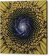 Fibonaccis Mandela V.2 Canvas Print