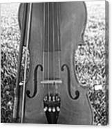 Fiddle And Bow Bw Canvas Print