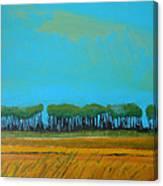 Field 5 Canvas Print