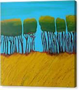 Field 7 Canvas Print