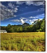 Field Bathed In Sunshine Canvas Print