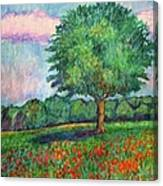 Field Edge Canvas Print