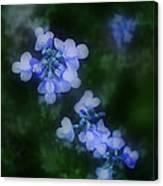 Field In Blue Canvas Print