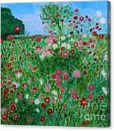 Field Of Cosmos Canvas Print
