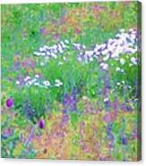Field Of Flowers In Nature Canvas Print