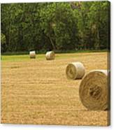 Field Of Freshly Baled Round Hay Bales Canvas Print
