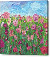 Field Of Pink For The Ladies Canvas Print