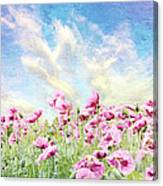 Field Of Poppies Stillliefe Canvas Print