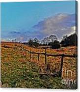 Field Of The Cotswold Canvas Print