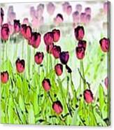 Field Of Tulips - Photopower 1492 Canvas Print
