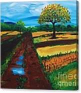 Field Road Canvas Print