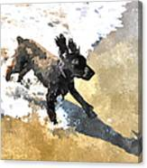 Field Spaniel Joy Canvas Print