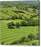 Fields In Northern Ireland Canvas Print