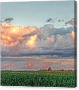 Fields Of Corn Canvas Print