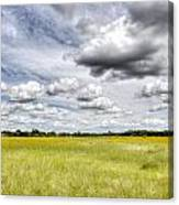 Fields Of Glory Canvas Print