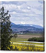 Fields Of Spring Canvas Print