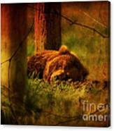 Fiercely Tired Canvas Print