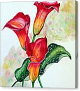 Fiery Callas Canvas Print