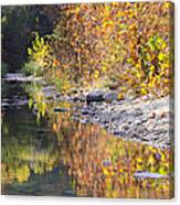 Fiery Reflection At Lost Maples Canvas Print