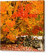 Fiery Rock Wall Canvas Print