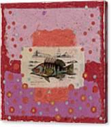 Fiesta Fish Collage Canvas Print