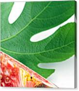 Fig And Leaf Canvas Print