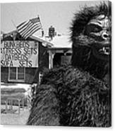 Film Homage Barbara Payton Bride Of The Gorilla 1951 Gorilla Mascot July 4th Mattress Sale 1991 Canvas Print