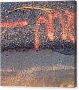 Film Noir Cinematographer Bruce Surtees Out Of Bounds 1986 Curb Casa Grande Arizona 2004 Canvas Print