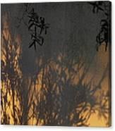 Film Noir Edward G. Robinson Richard Conte House Of Strangers 1949 Casa Grande Arizona 2004 Canvas Print
