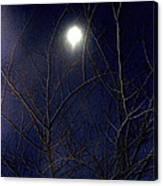 Film Noir Joseph H Lewis So Dark The Night 1946 Moon Trees Casa Grande Arizona 2000 Canvas Print