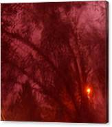 Film Noir Orson Welles Joseph Cotten Journey Into Fear 1942 Summer Storm Trees Casa Grande 2004 Canvas Print
