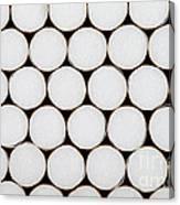 Filter Cigarettes Canvas Print