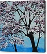 Finally Spring Canvas Print