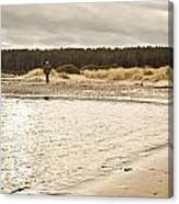 Findhorn Beach Canvas Print