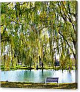 Finger Lakes Weeping Willows Canvas Print