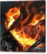 Fire 1 Canvas Print