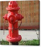 Fire Hydrant 3 Canvas Print