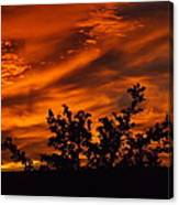 Fire In The Skies Canvas Print