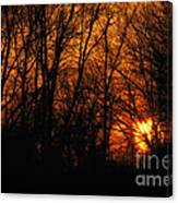 Fire In The Woods Sunset Canvas Print