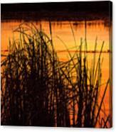 Fire On The Marsh Canvas Print