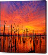 Fired Up Morn Canvas Print