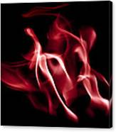 Firedragon Canvas Print