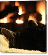 Fireside Cat Nap Canvas Print