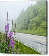 Fireweed And Fog Scenic Highway Canvas Print
