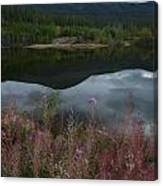 Fireweed Number 7 Canvas Print