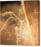 Firework Shower Canvas Print
