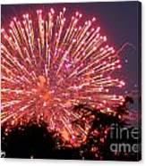 Fireworks 2014  1 Canvas Print