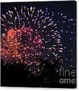 Fireworks 2014  3 Canvas Print