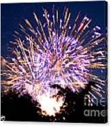 Fireworks 2014  6 Canvas Print